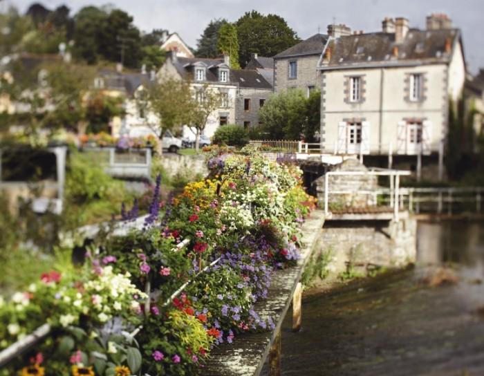1,6 miljonerklubben reser till Bretagne och det prunkande växtriket i byn La Gacilly